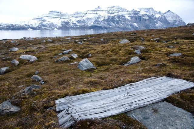 被冰冻3万年巨型病毒复活 人类将如何继续生存?