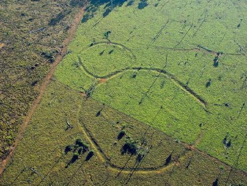 近年人类考古发现的十个未解之谜