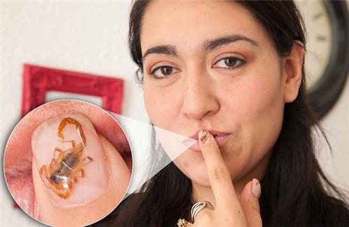 致命毒蝎做美甲 毒液15分钟可让人亡