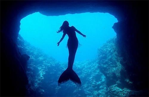 美人鱼真的存在吗?真相告诉你世界上有没有美人鱼