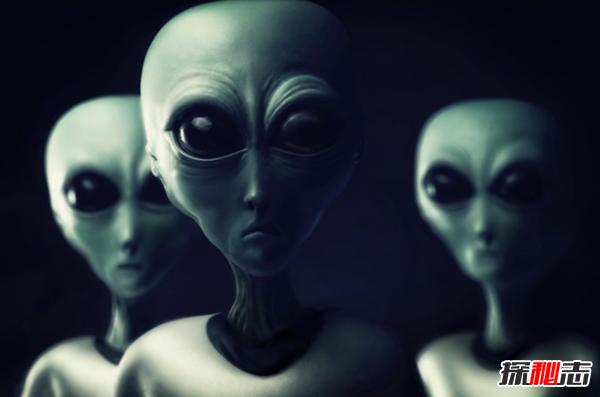 外星人长得什么样图片