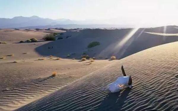 意大利死亡谷在哪 探索意大利死亡谷之谜(动物进去必死)