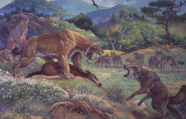 热沃当怪兽真的存在吗 热沃当怪兽的真相(恐狼后裔)
