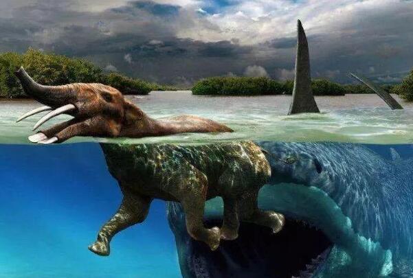 史前巨齿鲨生死谜:体长30米重80吨,鲸鱼为食(或未灭绝)