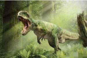 印度深海惊现恐龙时代沉没大陆,竟是恐龙时代的古大陆