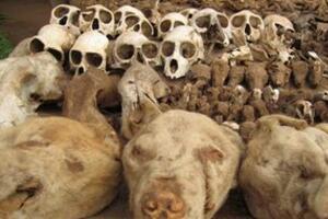 实拍非洲巫术祭品市场,贩卖人体器官辟邪(满城动物腐尸)