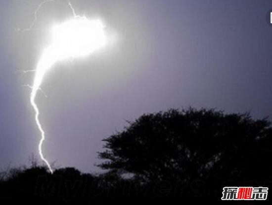 罕见球状闪电之谜,宙斯之杖闪电劈下的火球(自然现象)