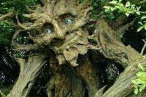 恐怖的吃人树奠柏,奠柏吃人是真的吗(虚构植物/图片)
