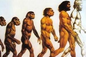 人体增高之谜,人类为什么不断的长高(科学无解)