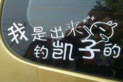 凯子什么意思?闽南语中的词汇(专指有钱的笨男人)