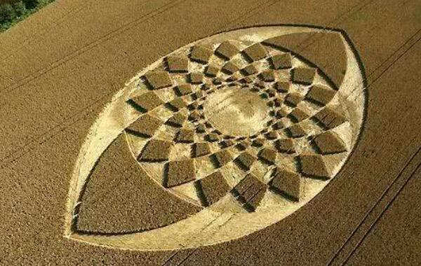 沙漠怪圈是怎么形成的 探索沙漠怪圈之谜(80%人为)
