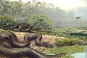 地球上的远古十大怪兽,泰坦蟒巨大(十大已灭绝巨型怪兽)