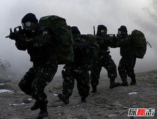 海豹特种部队_海豹特种部队军刀_海豹特种部队徽章