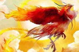 传说中吃龙的上古神兽重明鸟,山海经中最尊贵异兽(双瞳)
