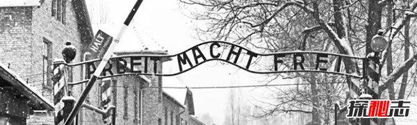 奥斯维辛有多惨?奥斯维辛集中营的十大辛酸历史