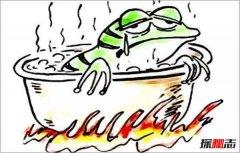 什么是青蛙效应?青蛙效应的启示和应用