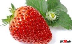 世界最毒的五种水果 第二有64种化学物质残留