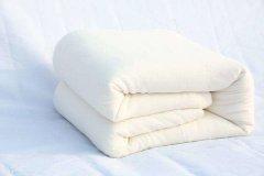 棉被上有很多小蟲(chong)子怎麼辦 棉被有蟲(chong)還可以(yi)繼續睡嗎