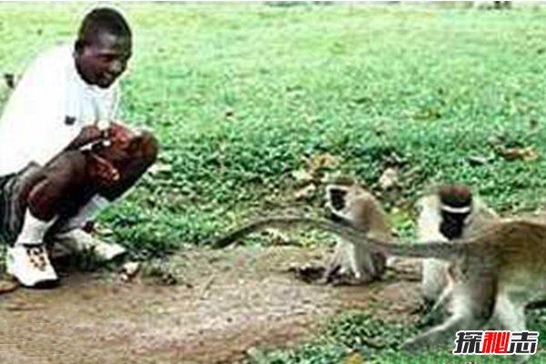 最快适应社会的兽孩:猴孩,与猴同住3年(今赴英国演出)