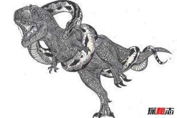 最初是在澳大利亚的纳拉寇特洞穴公园发现的沃那比蛇的化石,这是一种在澳大利亚已经灭绝的巨蛇,也是世界上最大的巨蛇类,在冰河时期,它时常栖息在水边,经常会潜入水中,伏击前来喝水的动物,比如袋鼠。曾经澳大利亚的原住民也为了防止被吃掉,规定不准靠近这些阳光充足的水源,但是后来沃那比蛇的灭绝也和澳大利亚原住民脱不了干系。  后来又发现了沃那比蛇缠绕恐龙的化石,这也是首次发现沃那比蛇吃恐龙的证据,化石完美的还原了沃那比蛇在吞吃恐龙的瞬间,和恐龙骨架等长的蛇形骨架缠绕在恐龙身上,虽然沃那比蛇的头骨有些细小,但是这并不