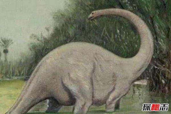 世界上唯一一只恐龙