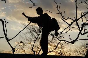 怎样自学练武功:选择适合的武功,花时间练不怕辛苦
