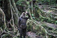 亚马逊森林未解之谜 流传着很多诡异传说(相当奇妙)