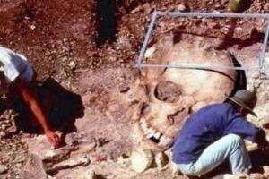 1962昆仑山螳螂人之谜,昆仑山螳螂人是真的吗(真的图片)