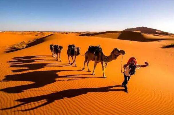 世界上最大的沙漠:撒哈拉沙漠,面积比美国大(形成于250万年前)