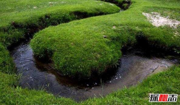 世界上最浅的河:耗来河仅有20厘米深,一本书就可以当桥