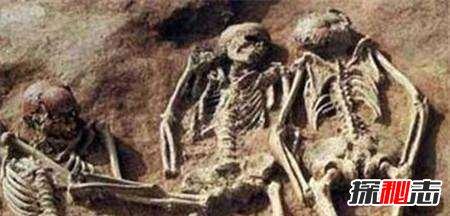 内蒙古4米巨人是真的吗,鲍喜顺身高超过五米是真的吗