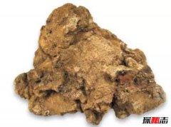 世界上最大的天然黄金 第一重量约60公斤堪称奇迹