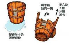 新木桶效应是什么意思?新木桶理论的启示