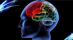 人类大脑开发100%会怎么样?大脑极限的恐怖