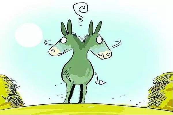 布里丹毛驢效應:猶豫誤大事,如何避免布里丹毛驢效應