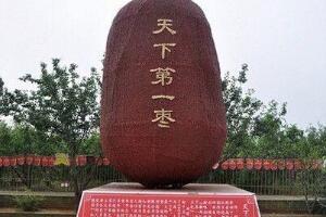 天下第一枣是什么品种:新郑大枣,由8万颗红枣制成