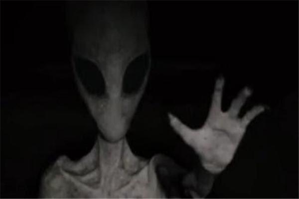 长达十万字人类与外星人对话是真的吗 主要内容是什么
