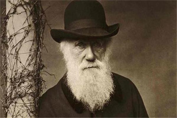 达尔文为什么用胚芽鞘做实验:能够快速生长(利于实验)