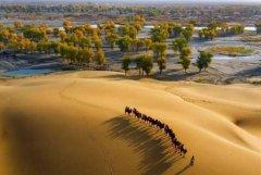 中国最大的沙漠:塔克拉玛干沙漠,33.76万平方公里
