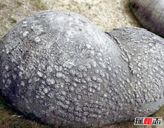 神奇石头Trovant,遇水会疯长任意移动