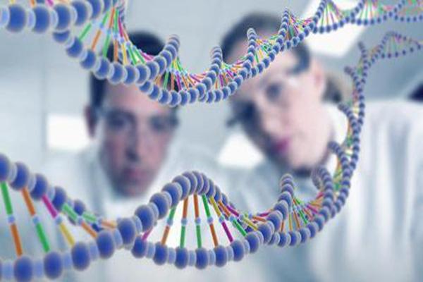 死亡基因被發現,缺失這種基因大概率患癌(癌癥克星)