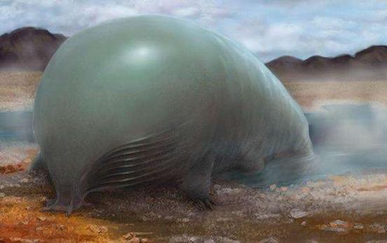碳基生命到硅基生命 硅基生命可以永生吗