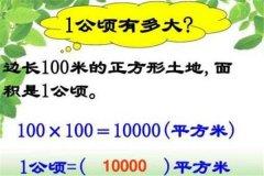 一公顷等于多少平方米:10000平方米(面积单位)