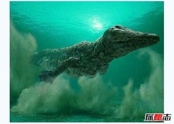 1、欧巴宾海蝎 2、怪诞虫 3、海果类动物 4、牙形石 5、甲青鱼类动物 6、笠头螈 7、水龙兽 8、陆行鲸 9、恐鹤 10、巨型袋鼠 11、雕齿兽 12、石爪兽 13、猛犸 1、欧巴宾海蝎  5.3亿年前生活在海洋中,那片海洋的位置是现在的加拿大。它竟然有着五只眼睛,这些眼睛的前面是一个有弹性的长嘴,顶端是个爪子。 它使用14对像橹一样的腮来游泳,可以长到1.
