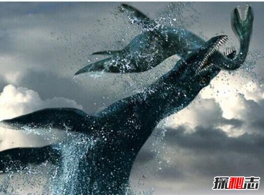 史前第一可怕巨兽,龙王鲸vs巨齿鲨谁才是最厉害的?
