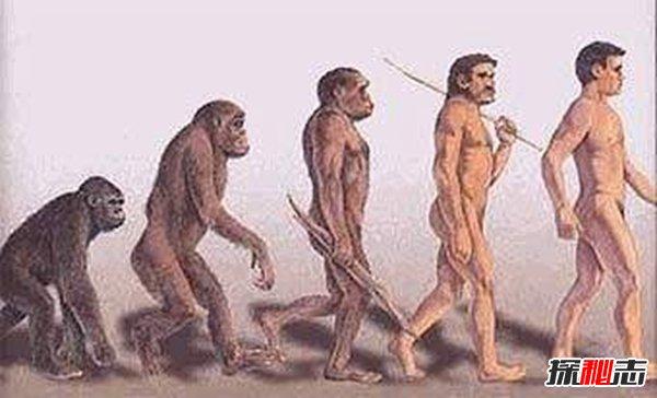 达尔文晚年推翻进化论,进化论存在最大的缺陷(被证实)