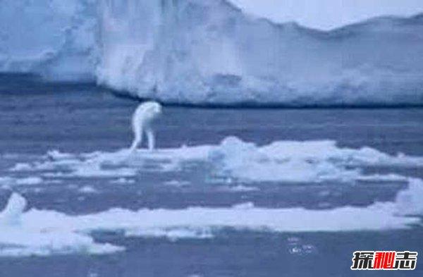 海底发现30米巨人,谷歌地图上竟可以找到这个巨人