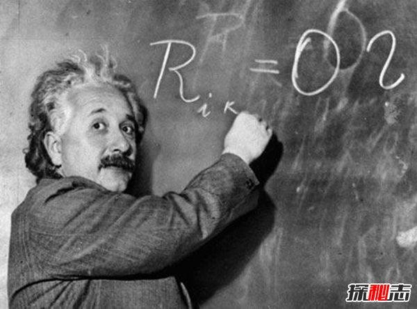 爱因斯坦四大预言,人类竟会随着蜜蜂消失而灭亡