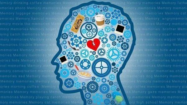 脑部记忆删除药物 人类记忆是否可以删除(尚未达到)插图4