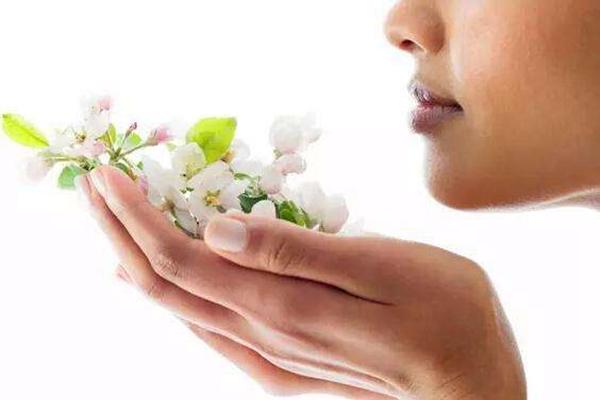 为什么鼻子能闻出各种气味?人类大约能辨别4000种气味